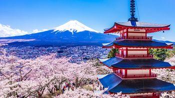 kyoto-vacation-incentive-525x295.jpg