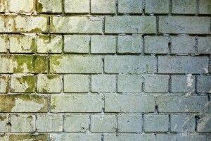 brick-wall-3194516_1280-300x200.jpg