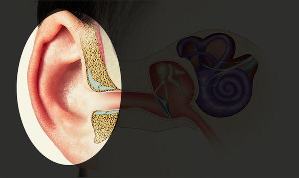outer-ear-606def3886623.jpg