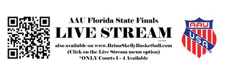 Livestream link.png
