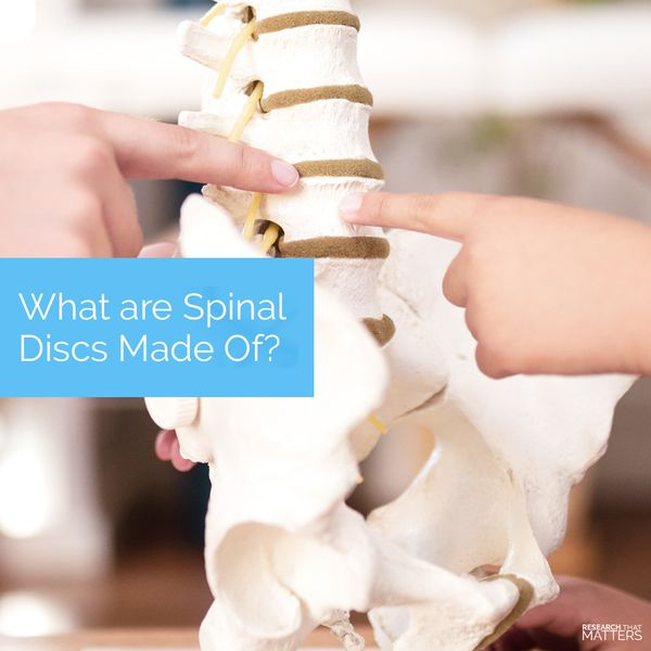 (FEB) Week 1 - What are Spinal Discs Made of.jpg