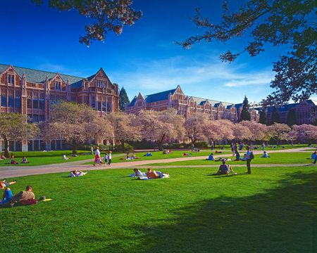 UW Quad in Bloom.jpg