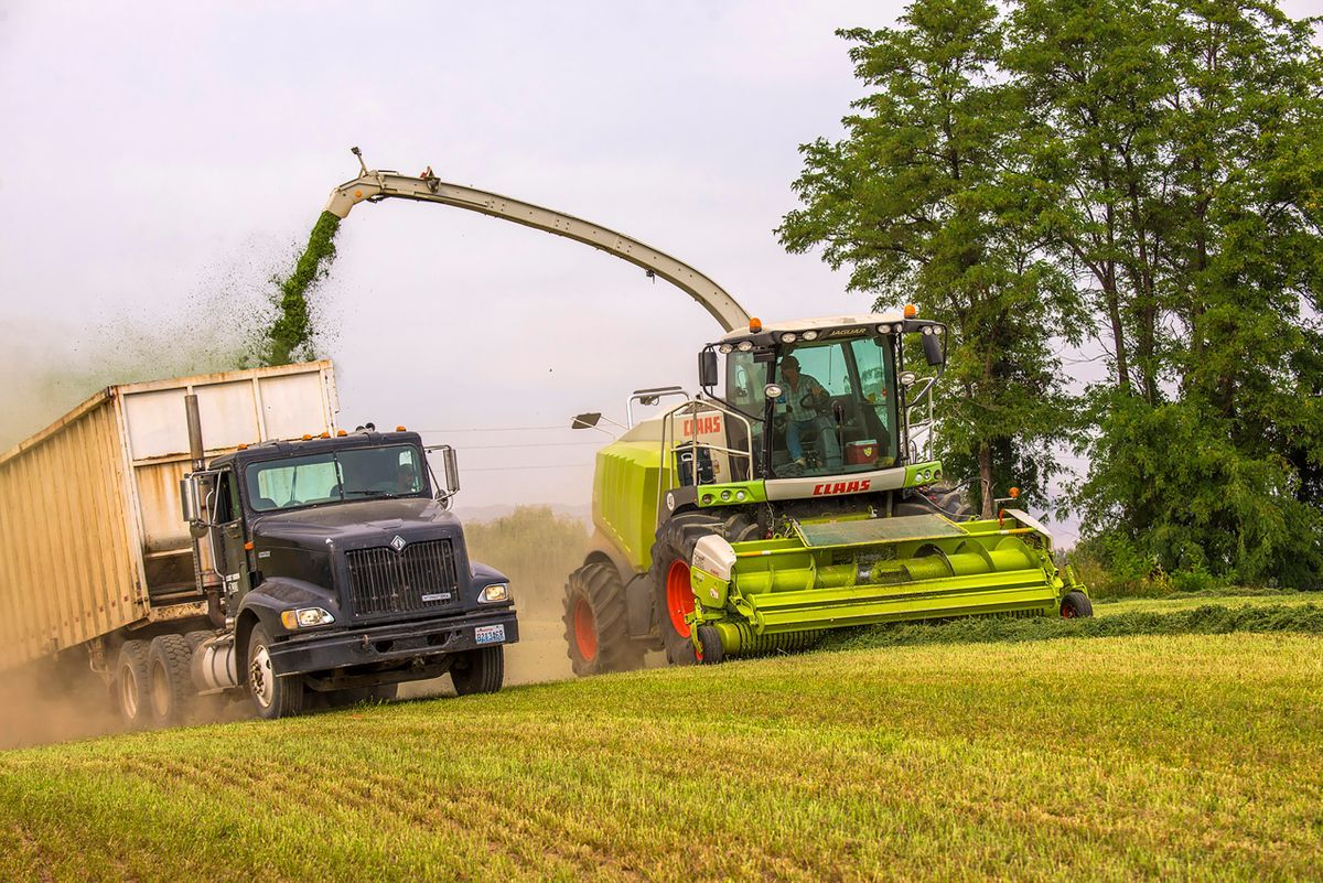 Washington Farming and Agriculture Photography.jpg