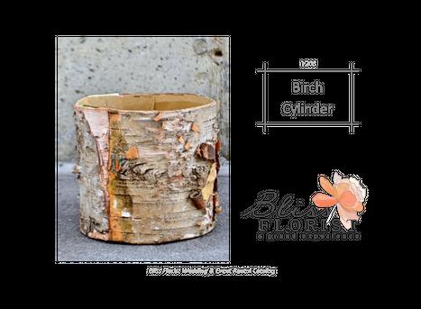 Birch-Cylinder-58b187a4b442b.png