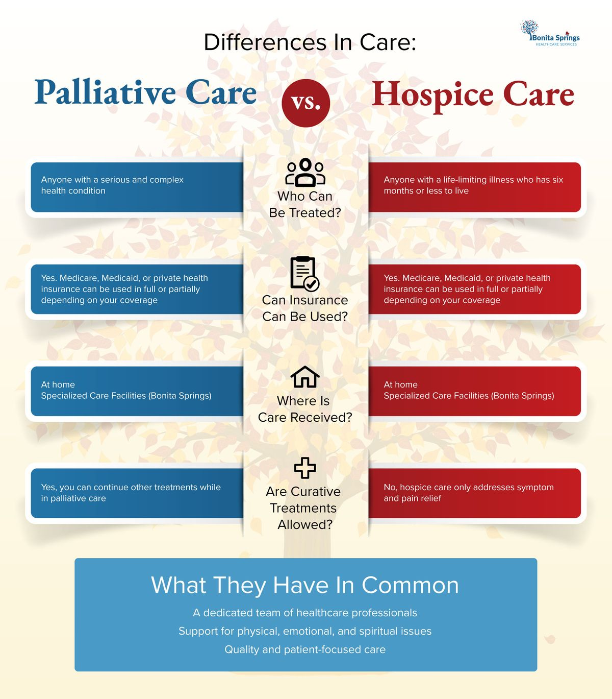 differences-in-care-infographic.jpg