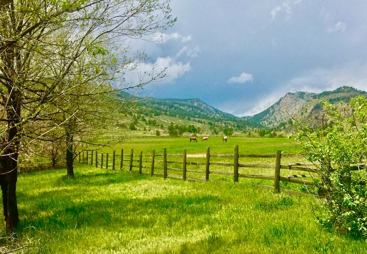Sylvan Dale Ranch - Spring 2020 - Photo Mary Scott.jpeg
