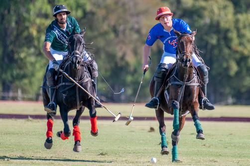 Polo players during match