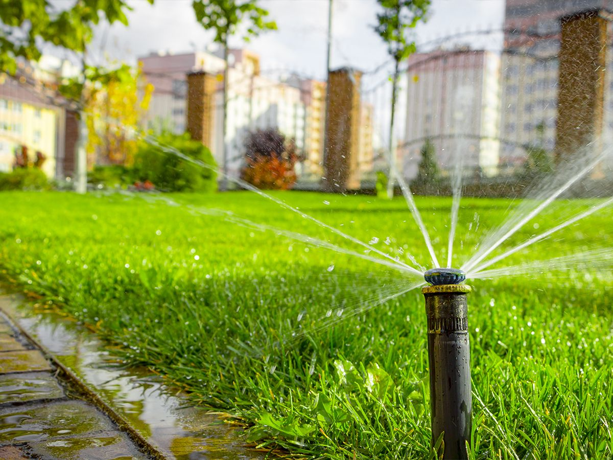 Image of a newly designed  irrigation system.