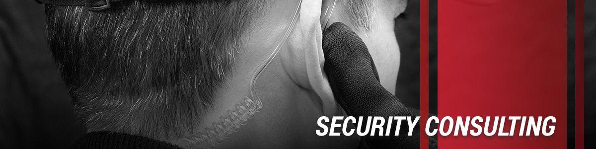 Security-Consulting-5b76dd12971da.jpg