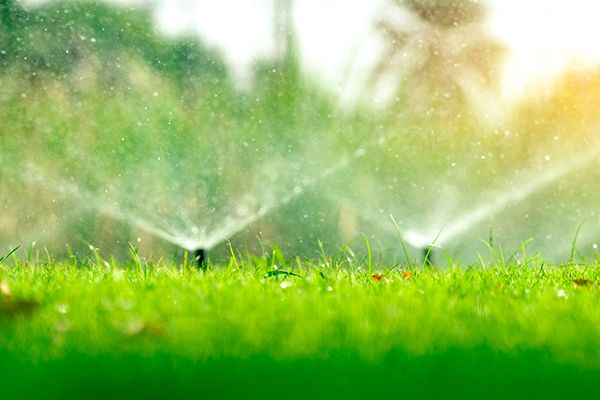Image of sprinklers going off in a yard