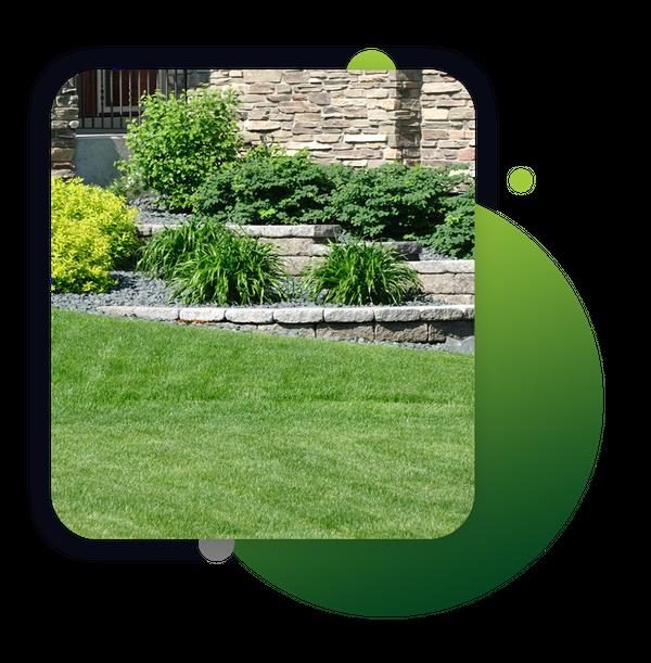 lawn image