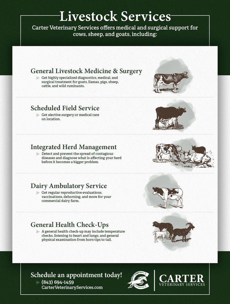 Livestock Services Infographic.jpg