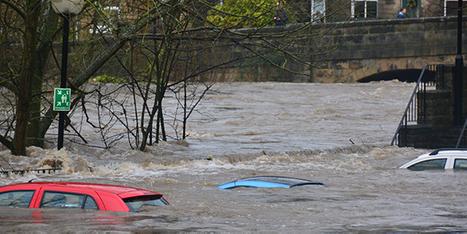 flood_img.png