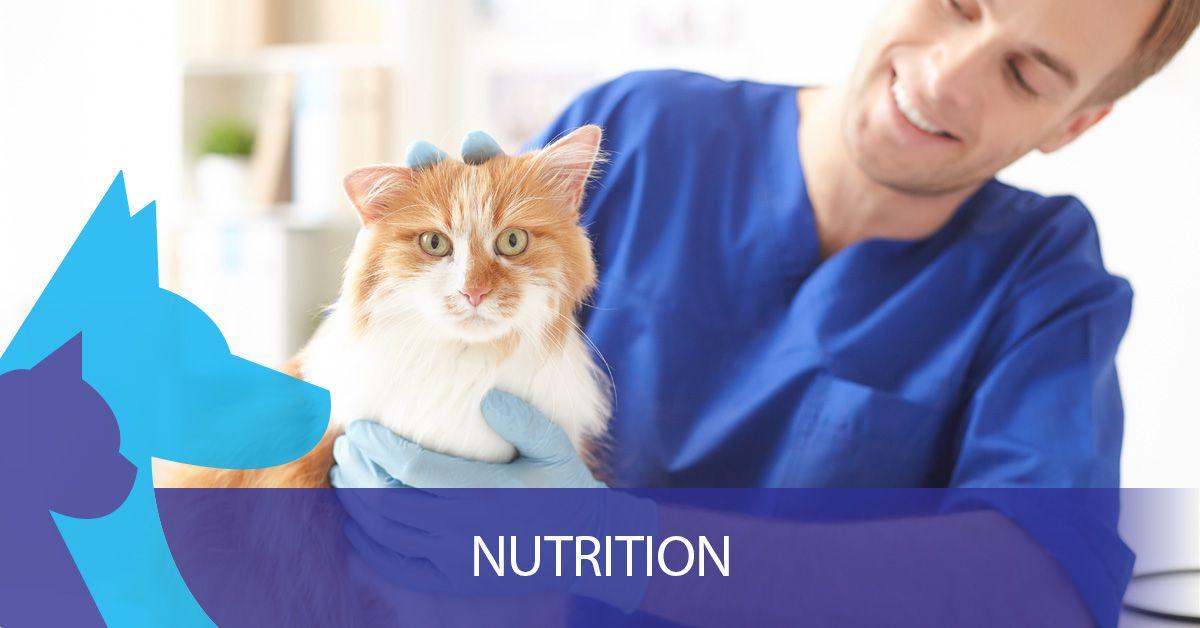 Nutrition-5ca6a211e7d20.jpg