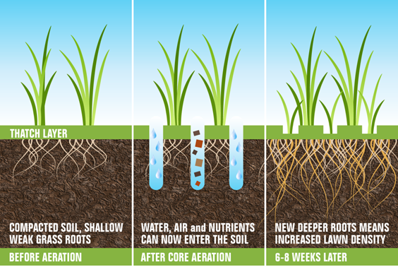 aeration-in-wimington-ma.png