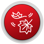 fall leaf icon.png