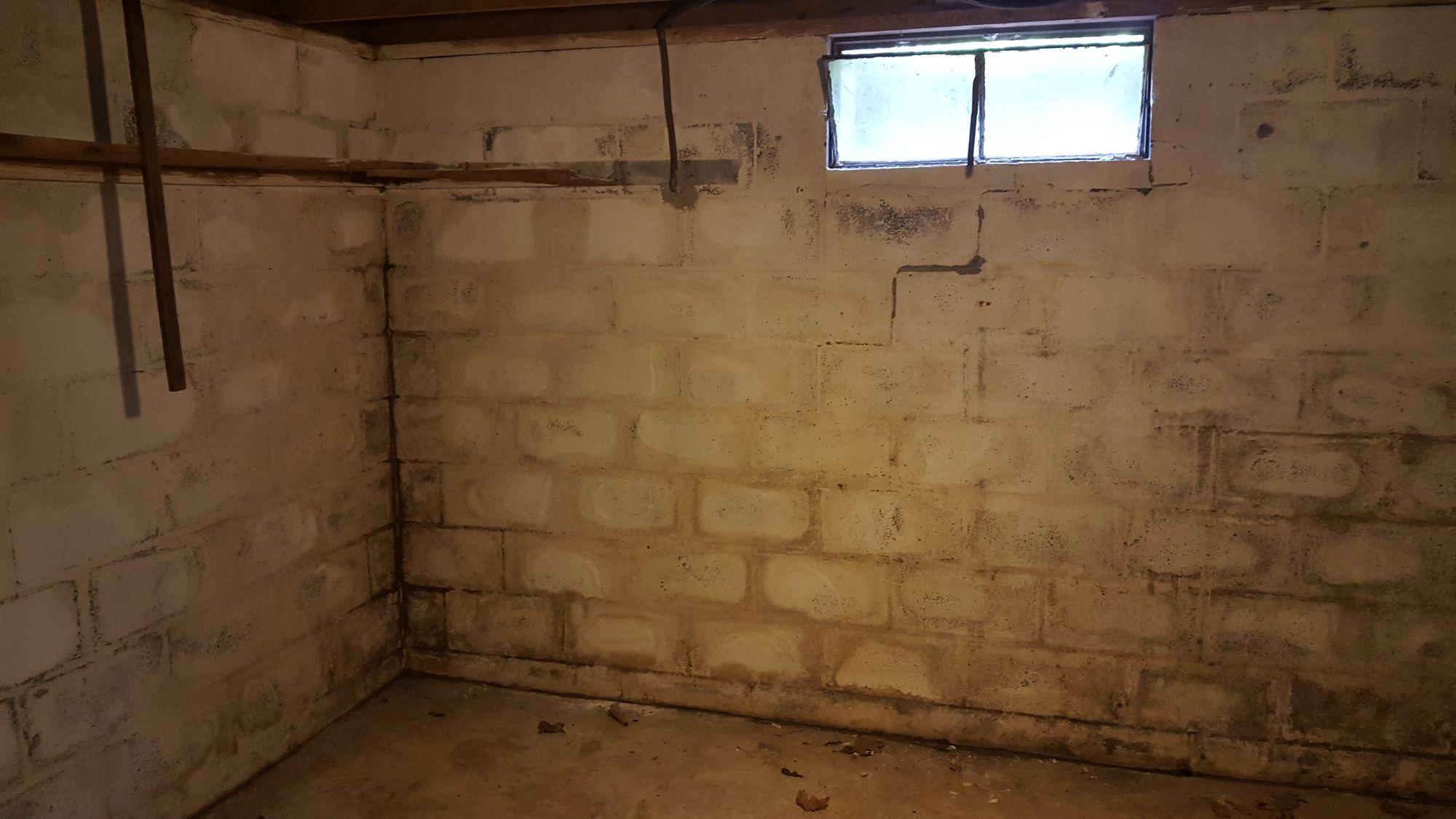 johnson - basement moisture before.jpg