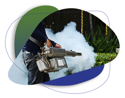 Learn how On Target Pest Control removes mosquitos