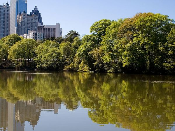 Skyline and trees of Atlanta, Georgia.