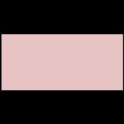 Safety standard icon