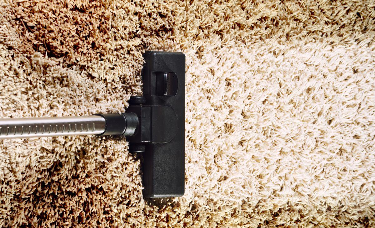 Clean_shaggy_carpet.jpg