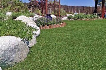 lawn_home_landscape_artificial_turf_grass_plushgrass5-360x240.jpg