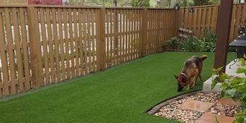 Small Backyard - PlushGrass Turf 500x250.jpg