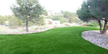 Backyard - PlushGrass Turf.png