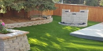 Backyard Dog Cleanup - PlushGrass Turf 500x250.jpg