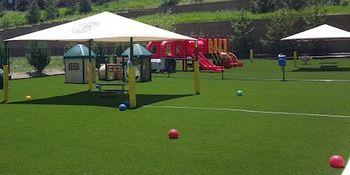 Community Playground - PlushGrass Turf 500x250.jpg