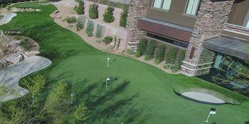 Arield Las Vegas Putting Green - PlushGrass Turf 500x250.JPG