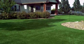 lawn_home_landscape_artificial_turf_grass_plushgrass106.jpg