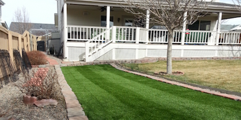 Backyard Strip - PlushGrass Turf.png