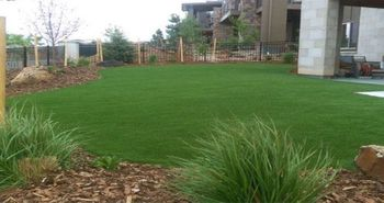 lawn_home_landscape_artificial_turf_grass_plushgrass110.jpg