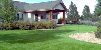 Backyard Putting Green - PlushGrass Turf 500x250.jpg