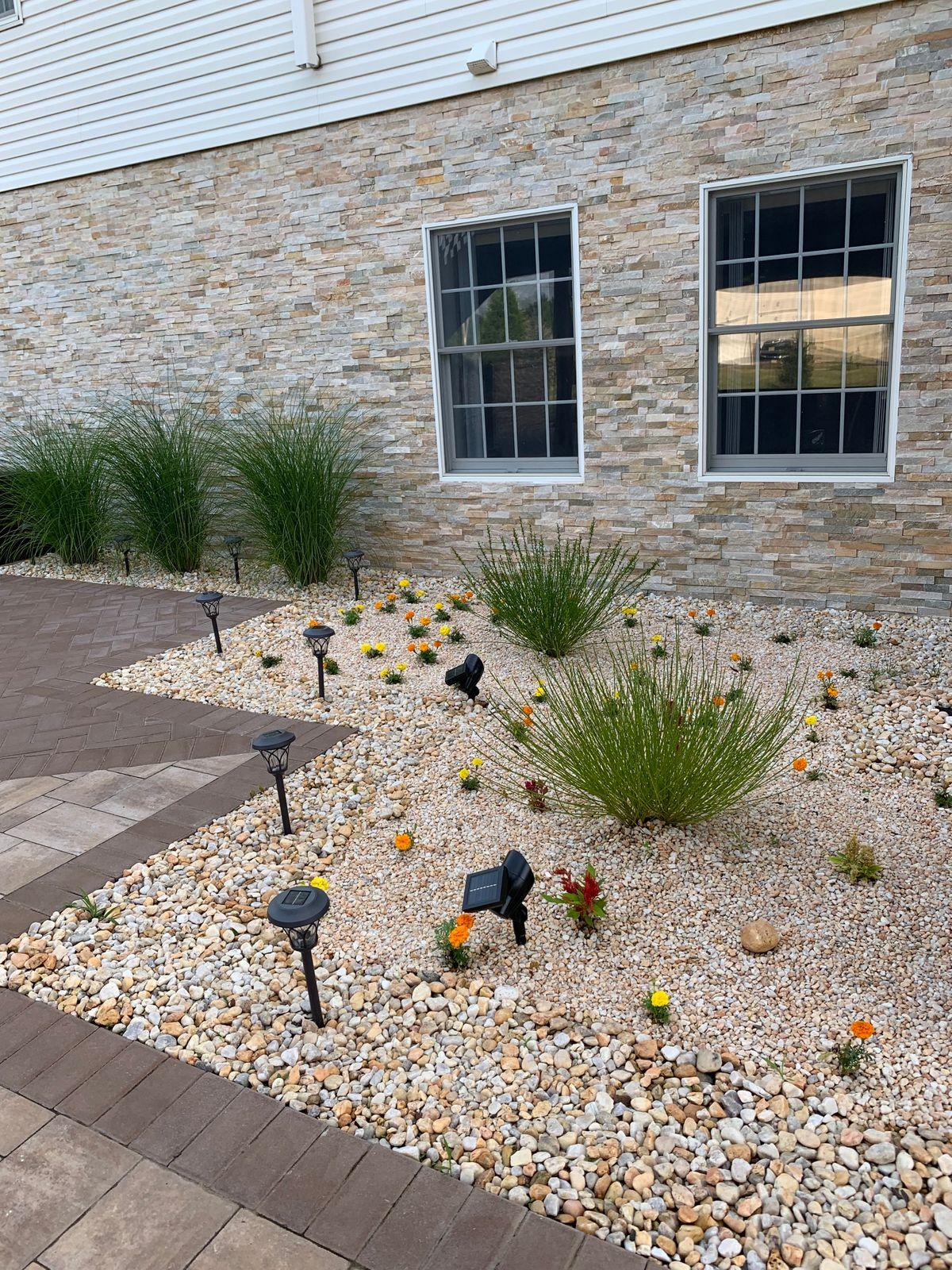 cute backyard design.JPG