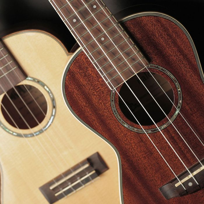 An image of two guitars, one made with a light wood and one made with a dark wood.