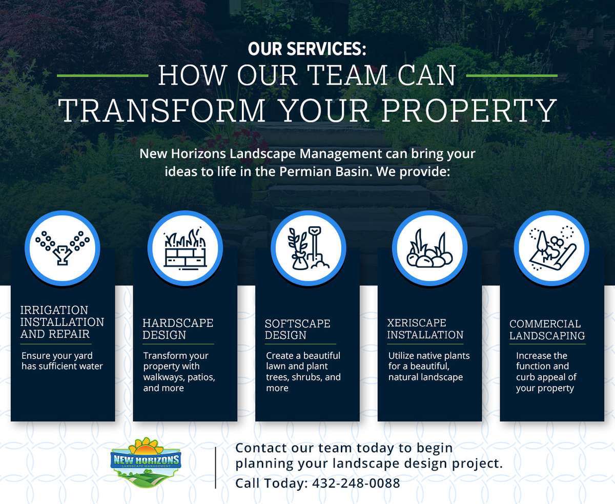 Our Services How Our Team Can Transform Your Property Infographi.jpg