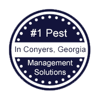 1 Pest Management Solutions In Conyers, Georgia.png