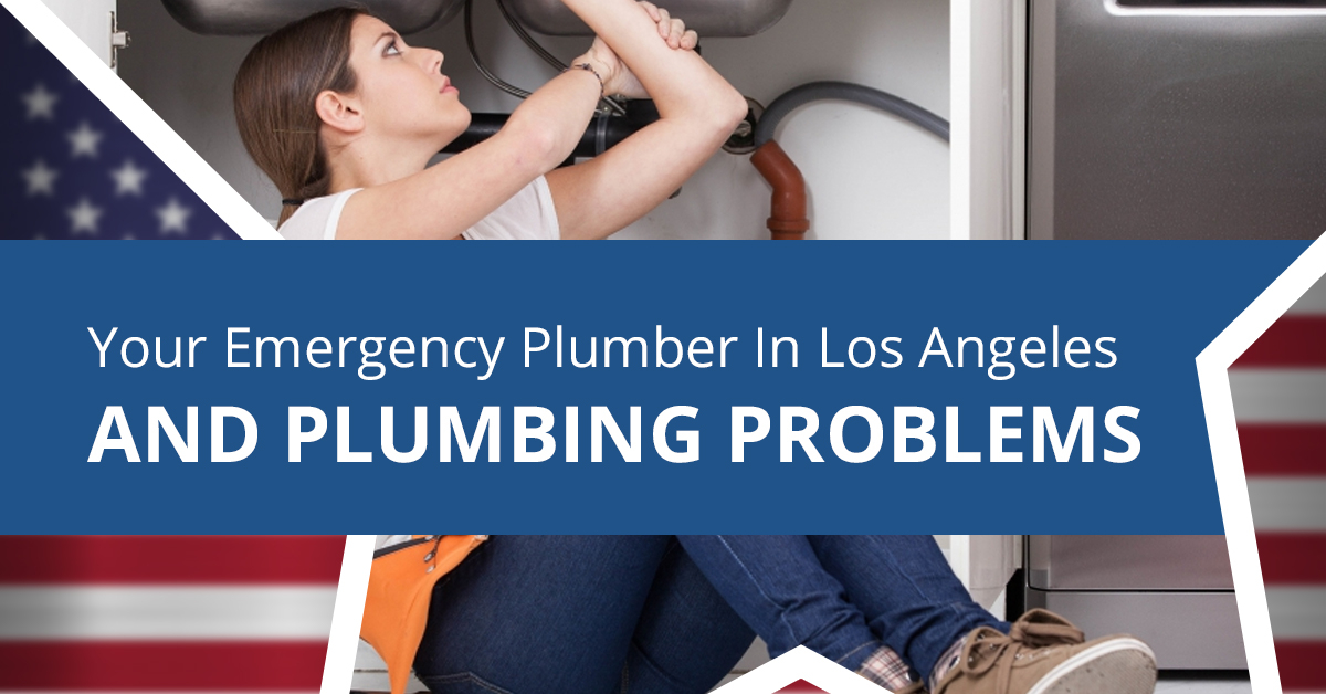 Your-Emergency-Plumber-in-Los-Angeles-and-Plumbing-Problems-5c3e57ea2cea1.jpg