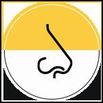Bad Odor Icon