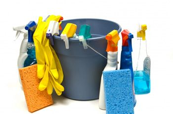 Cleaning Supplies and Bucket