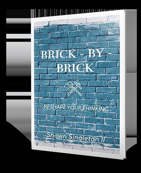 Brick by Brick Book Cover