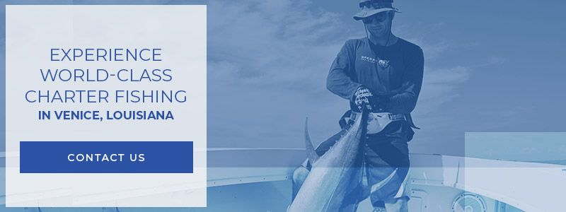 experience-world-class-charter-fishing-contact-us-CTABANNER-5d26096abd9af.jpg