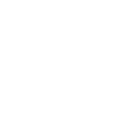Checkmark-White-5c8a6fc5c82db-155x155.png