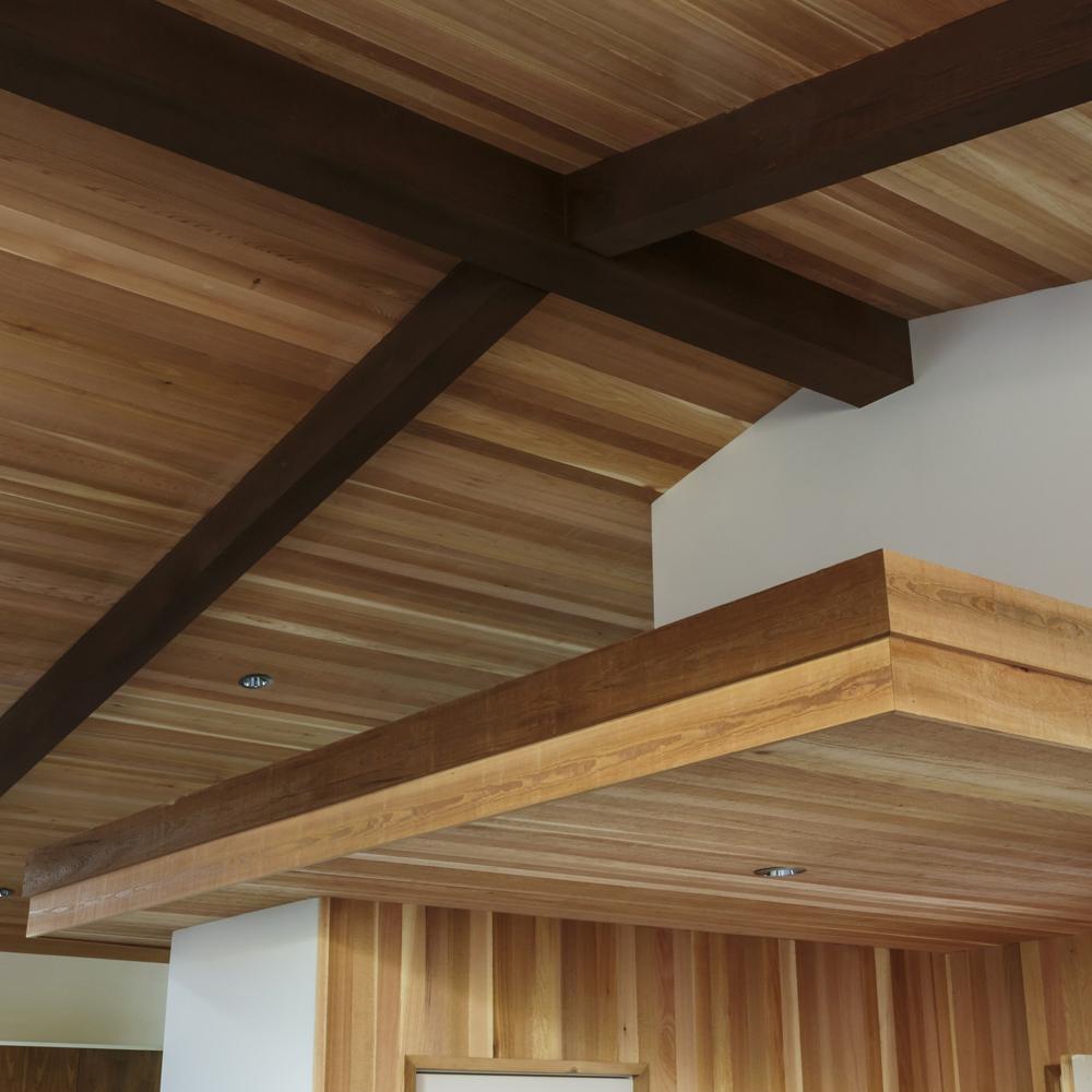 ceiling bg1.jpg
