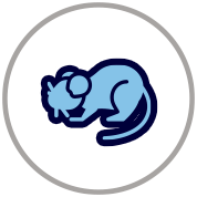 icon1 copy 4.png
