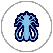 icon1 copy 3.png
