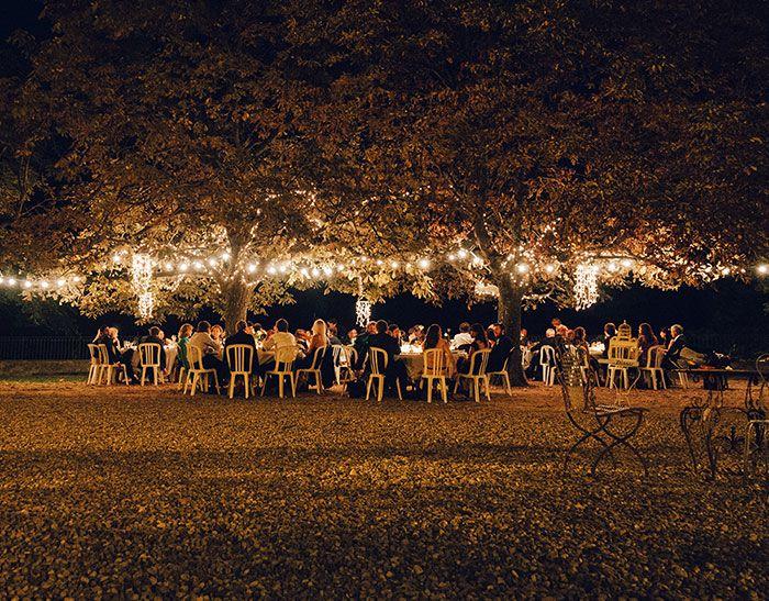 Beautiful lighting under a tree