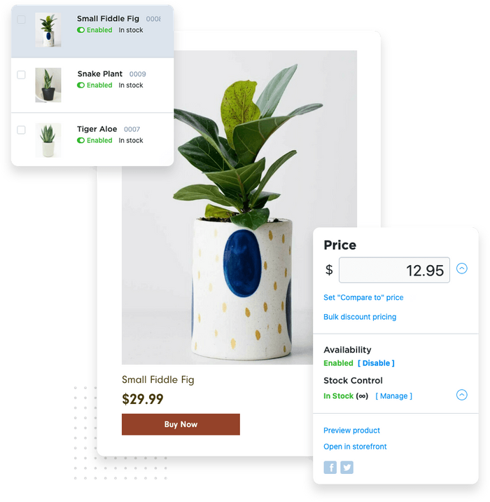Fiddle fig e-commerce product page